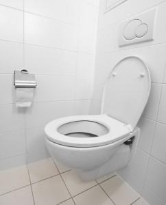 efficient toilet